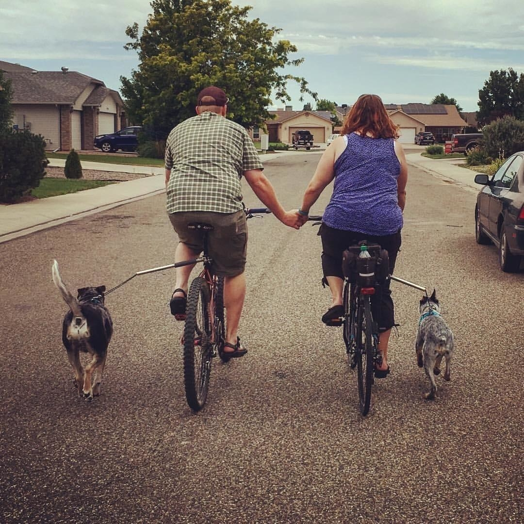 A bike-riding couple holding hands while two dogs attached to the bike via the leash extender walk alongside them
