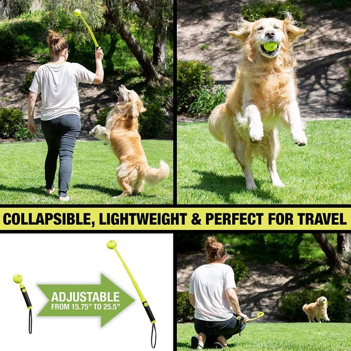 A set of four images of a person using the ball launcher, a happy dog catching the ball in its mouth, and a photo demonstrating that the ball launcher is adjustable in length