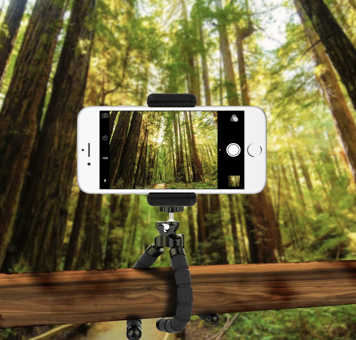 A flexible tripod, holding a phone and attached to a branch.