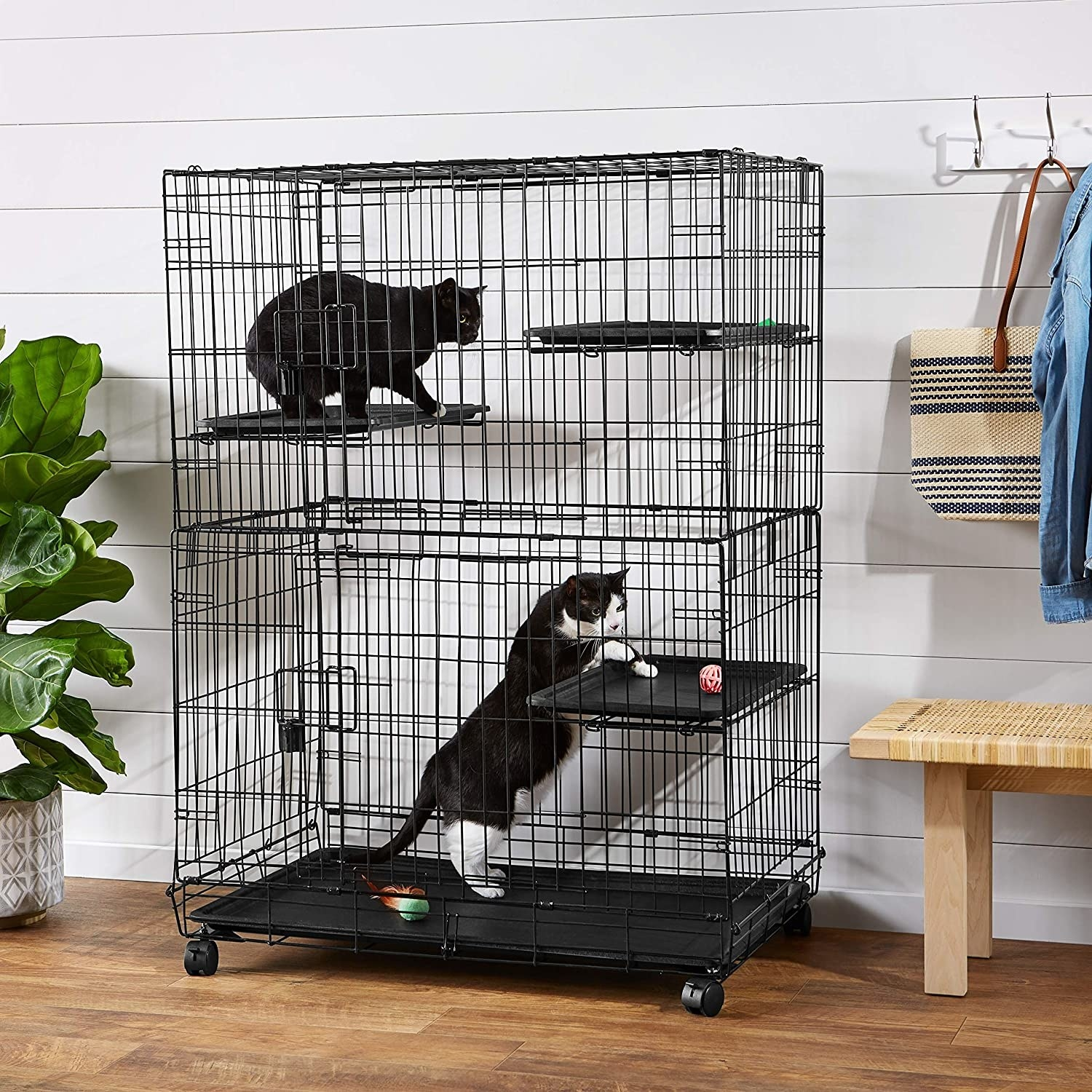 A playpen with two cats inside, one black cat sitting on a pad on the second tier and one black and white cat playing with a ball on the first tier