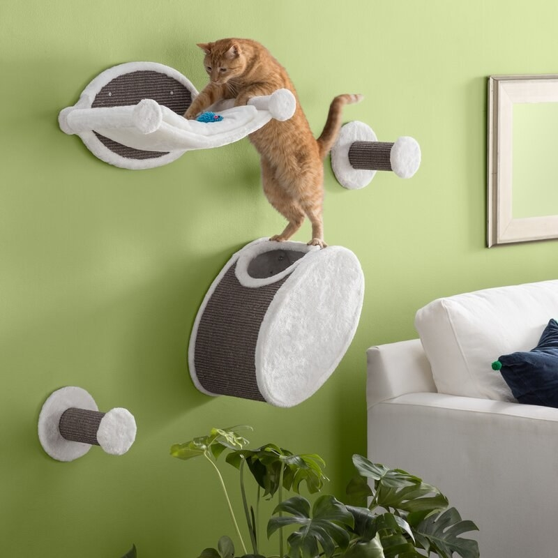 An orange and white cat standing on top of the perch on its hind legs reaching for a toy on another ledge