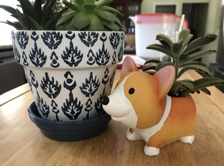 A small cartoon-like corgi planter with a succulent in it next to a larger flower pot