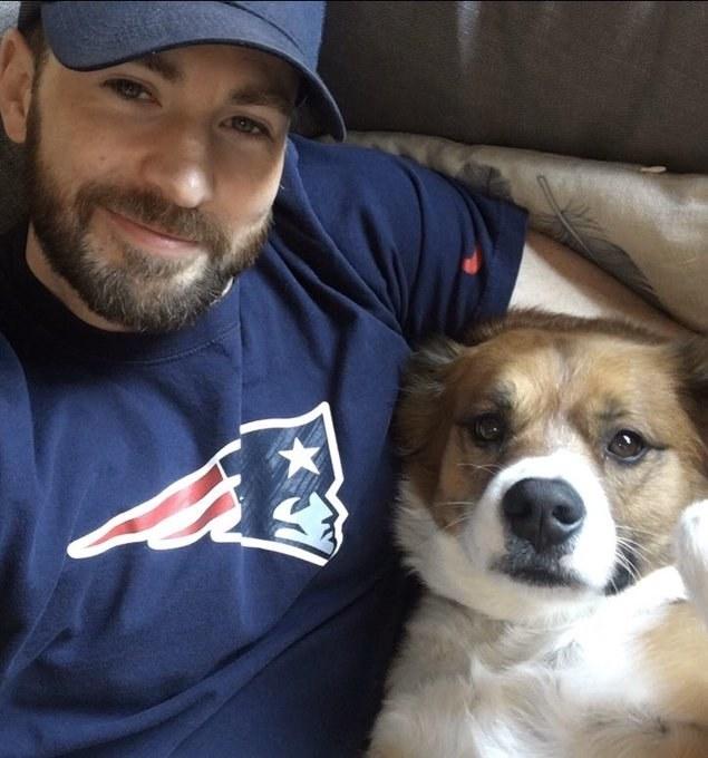Chris Evans and Dodger