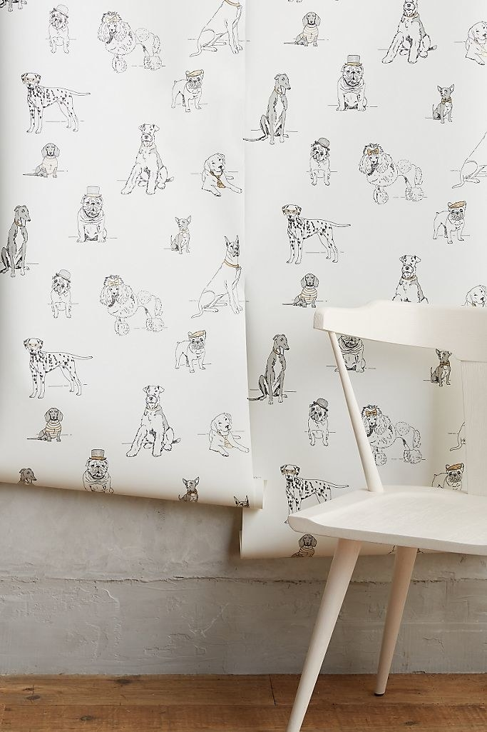 white wallpaper covered in black drawings of various dog breeds