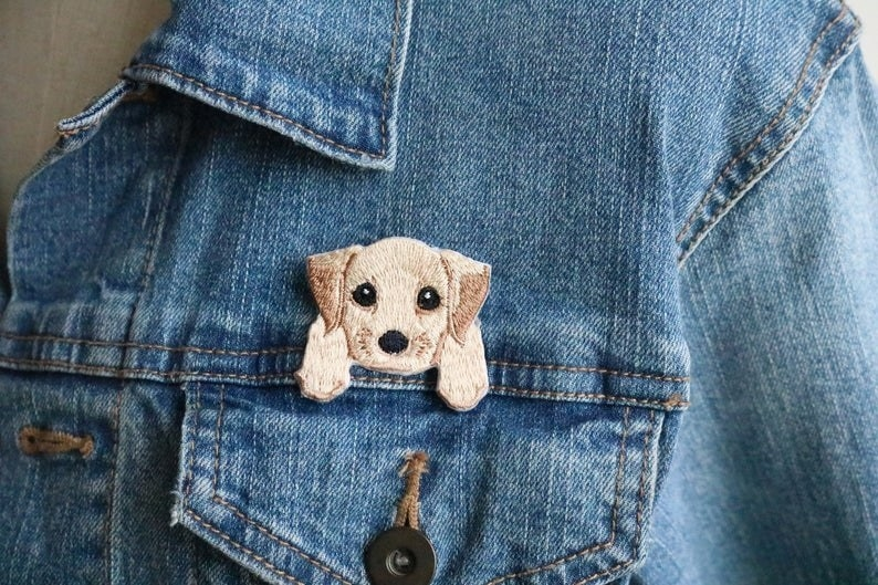 an adorable patch of a blonde puppy with big eyes and tiny paws that create the illusion it is hanging out of a pocket