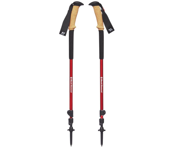 The hiking poles, featuring a red shaft, cork grips, rubber grip extensions, and solution straps