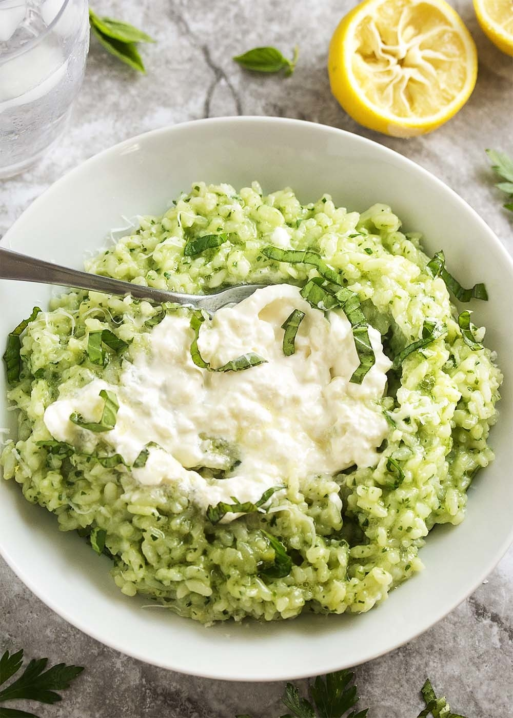 A bowl of creamy pesto risotto with a dollop of burrata on top.
