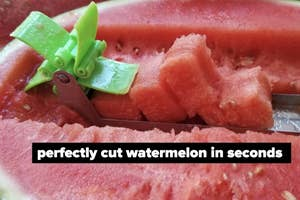 tool slicing watermelon labeled