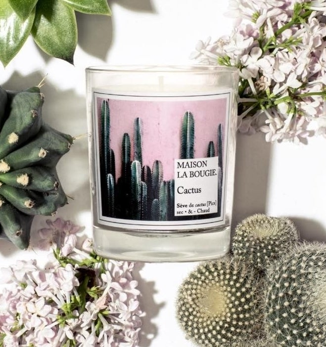 "candle with image of cacti against pink wall labeled ""Maison La Bougie cactus"""