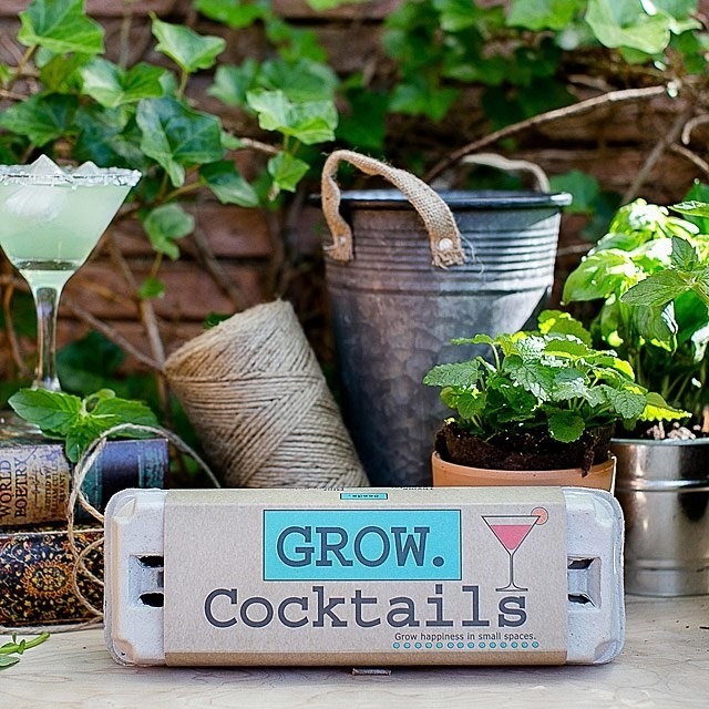 A photo of the grow cocktails in an egg cart with a background of fresh, potted herbs.