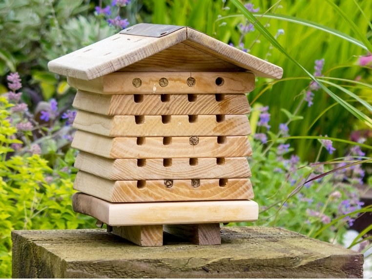 a wooden house-shaped bee hotel with holes for bees
