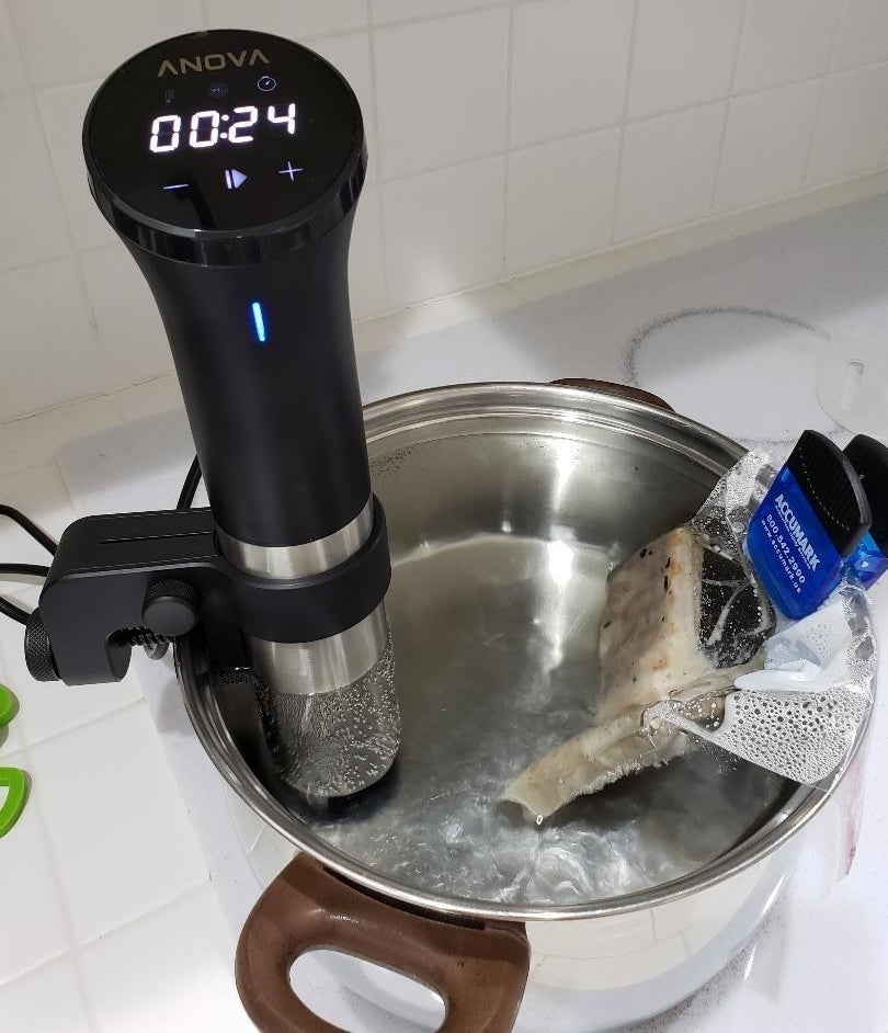 A reviewer using the sous vide in a pot of water to cook fish