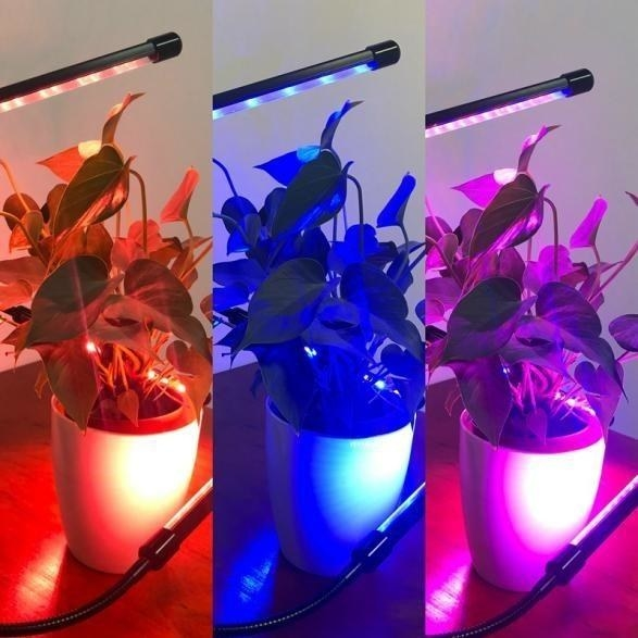 Reviewer photo of the lights showing the red, blue, and purple color options