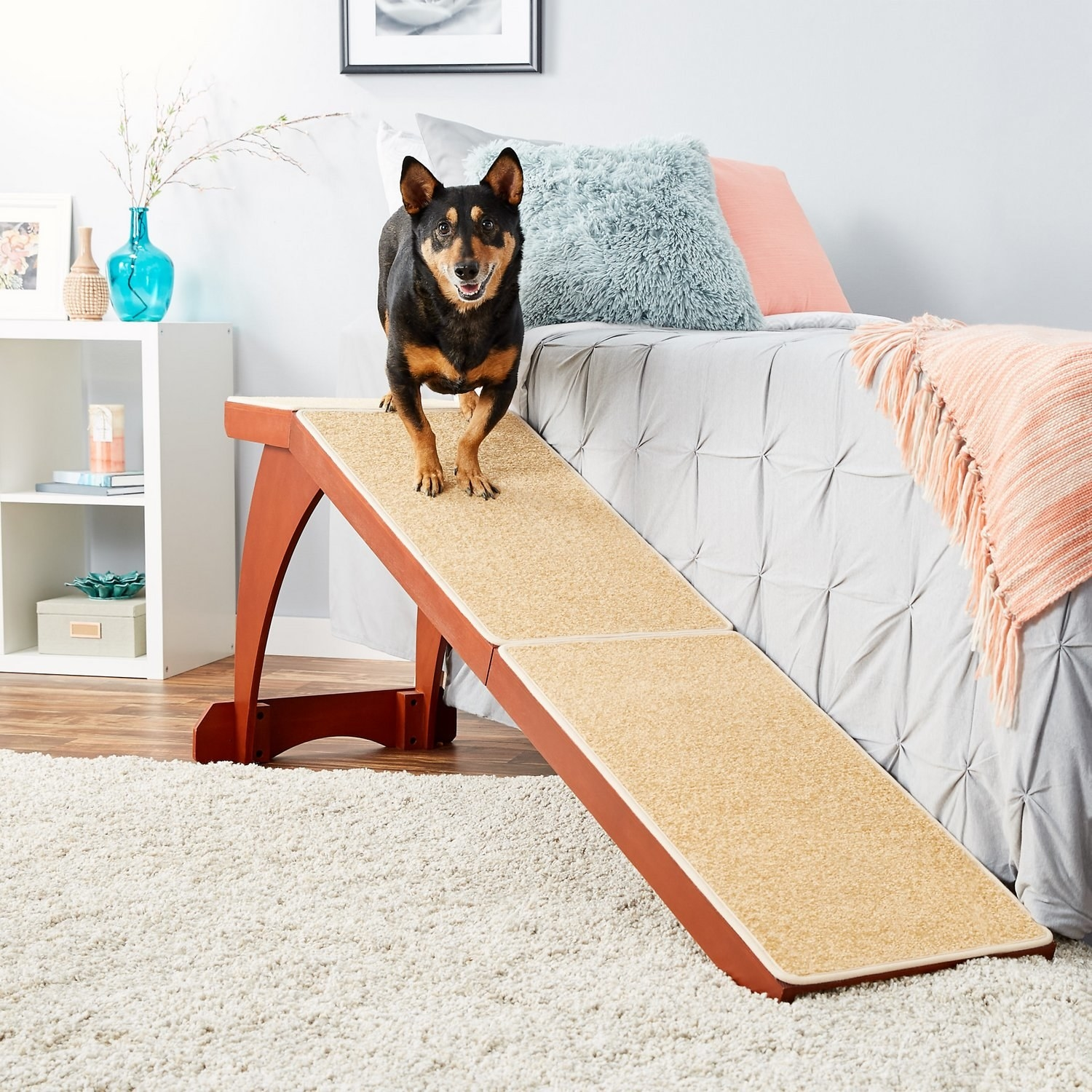 A short-legged dog on top of a carpeted, wood ramp that is placed beside a tall bed