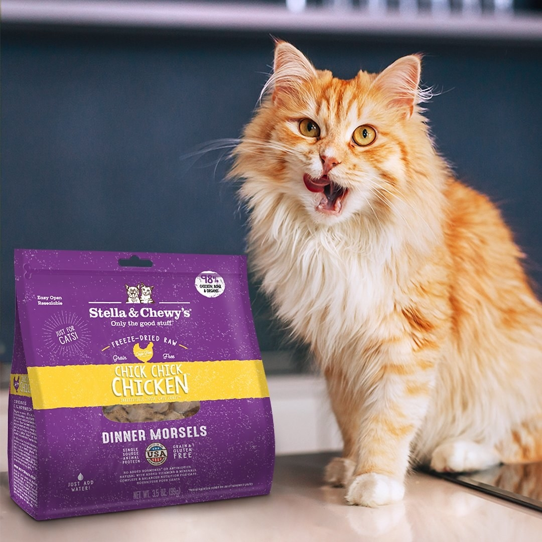 A cat licking its lips while standing beside a bag of Stella & Chewy's cat food