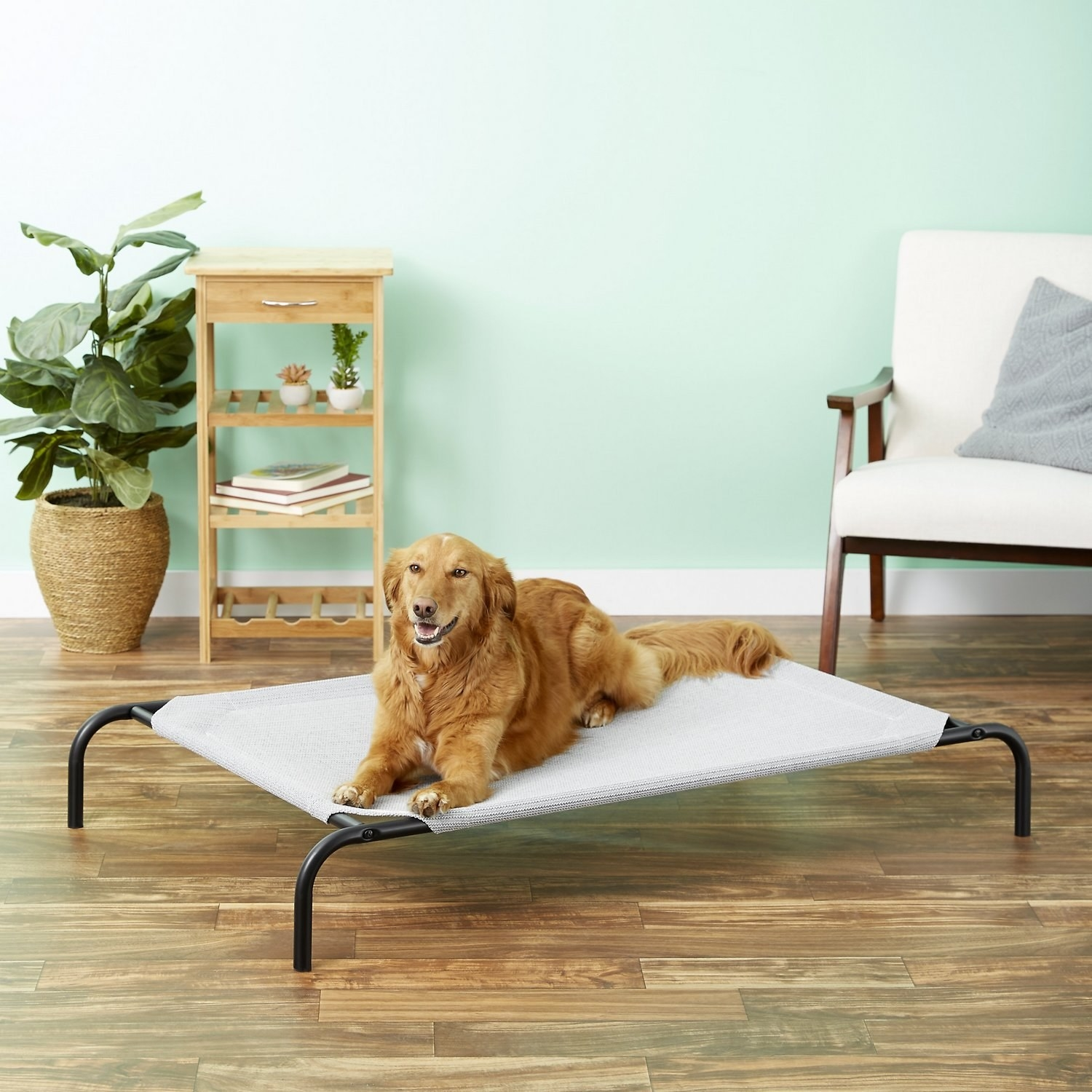 An elevated dog bed with a sturdy fabric stretched over the piped frame