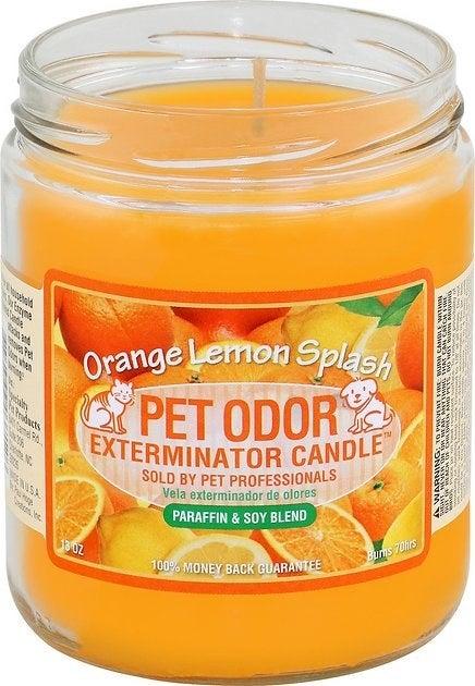 Orange Lemon Splash Pet Odor Exterminator Candle