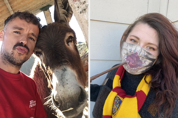 Did You See This Heartwarming Donkey Reunion? Plus, Check Out This Magical Harry Potter Face Mask!