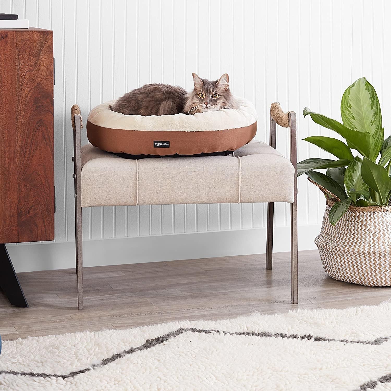 cama redonda para mascota