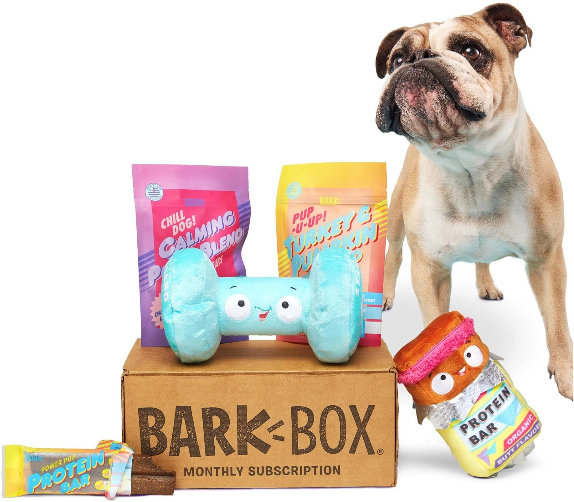 Product photo showing a Bark Box and some things that might come inside it each month