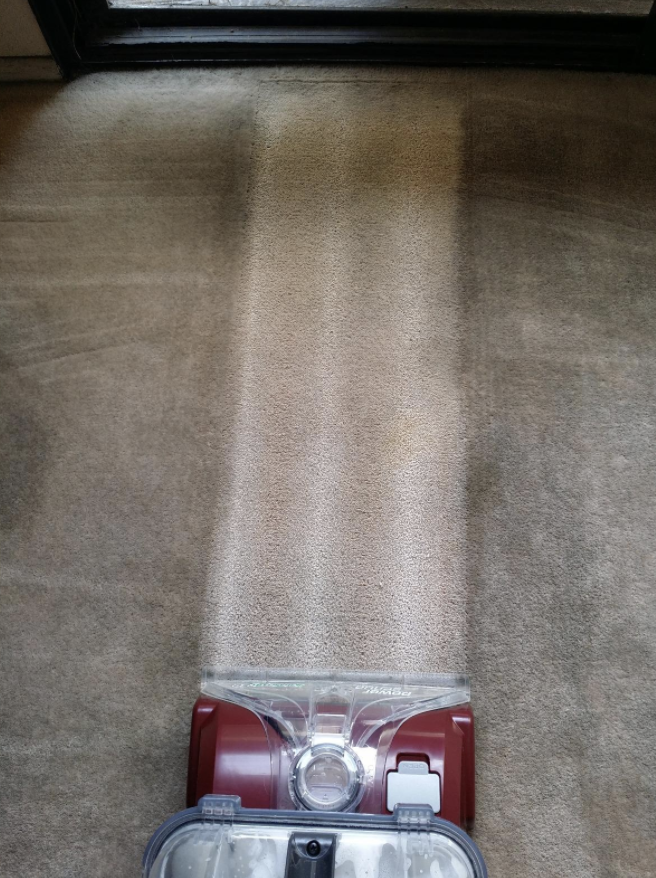 Reviewer's revived carpet (no more stains!) after using the same carpet cleaning solution