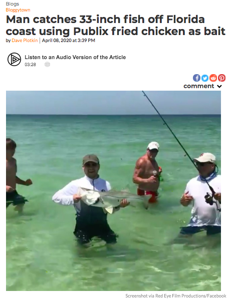 Man catches 33-inch fish off Florida coast using Publix fried chicken as bait