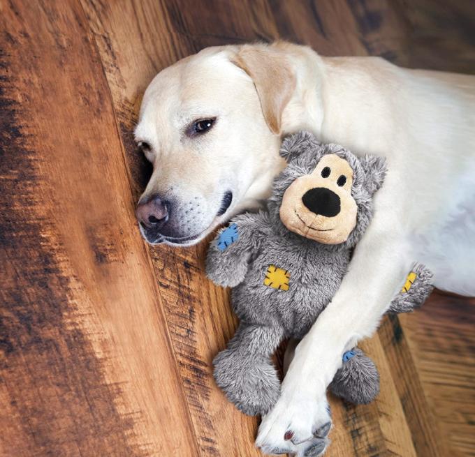 A golden retriever lays on floorboards, cuddling a stuffed teddy
