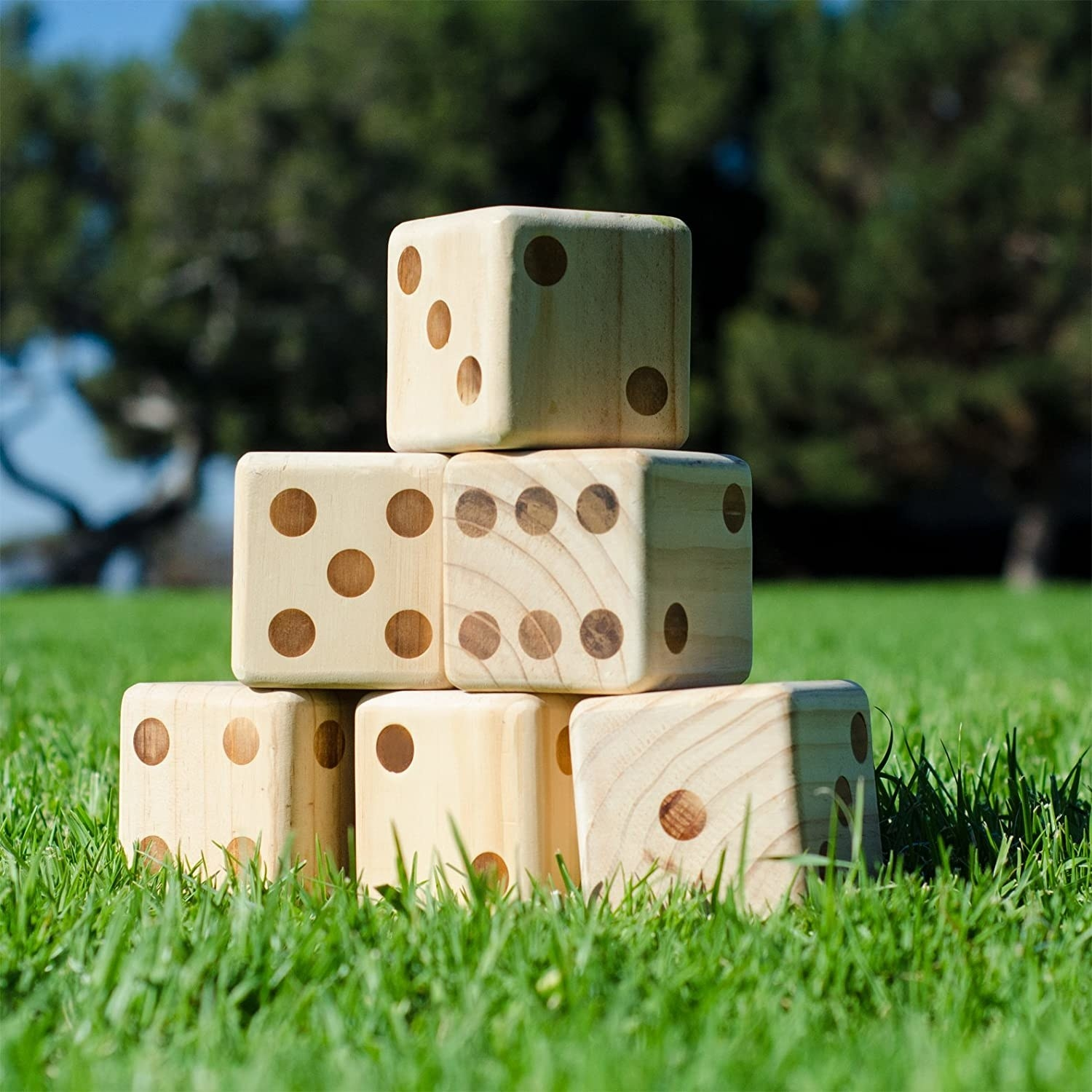 set of six large dice on green grass
