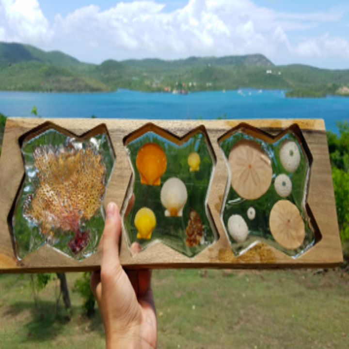 A reviewer holding up a seashell woodwork piece. The wooden plank is cut into three open spaces where shells were placed and filled with resin to create a clear showcase for each shell.