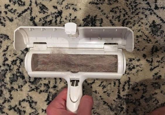 Reviewer's picture of the pet hair-removing brush filled with fur