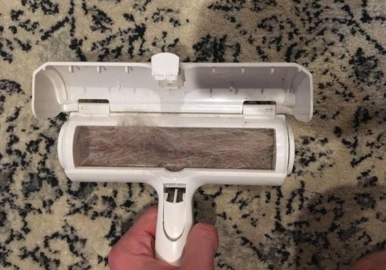 Reviewer's picture of the pet hair–removing roller filled with fur