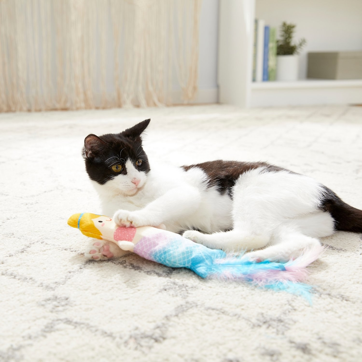 a cat with the mermaid toy, which has a feather tail