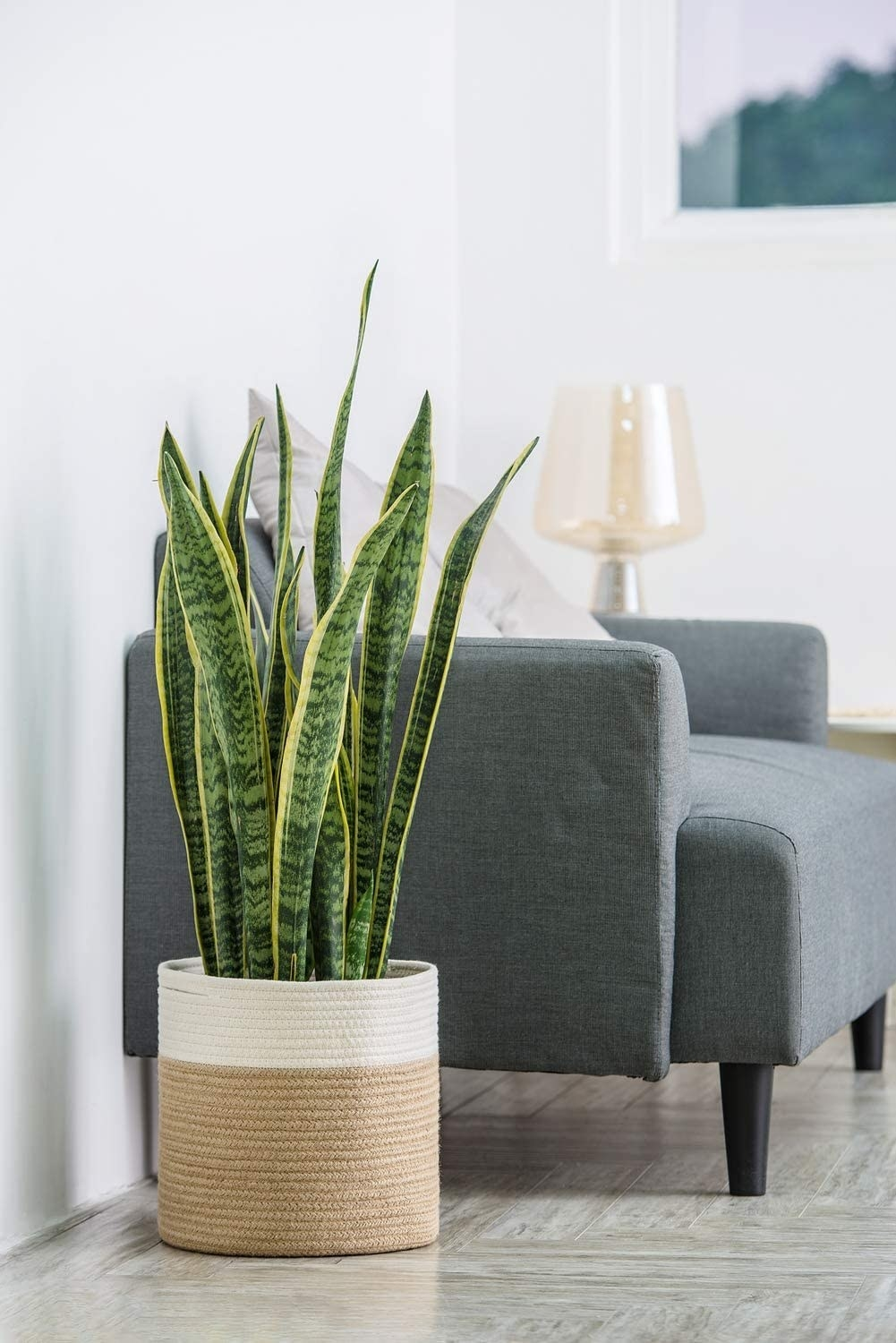 The rope plant basket next to a sofa.