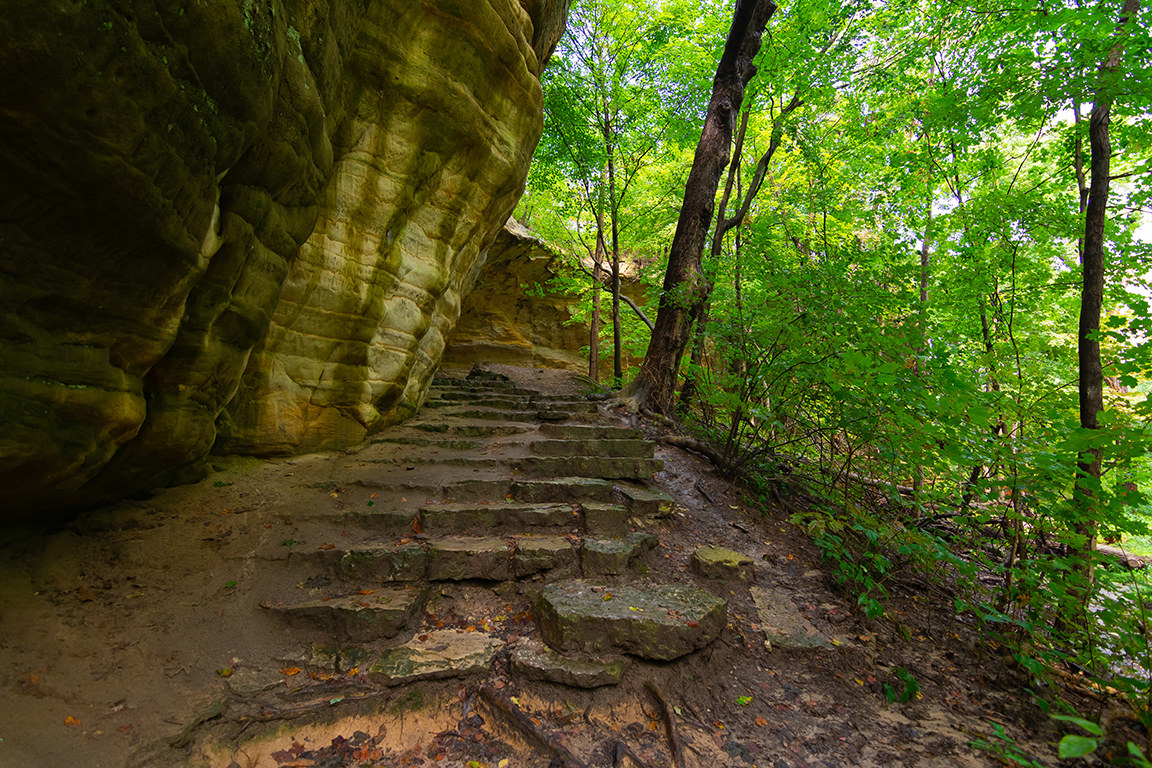 A slightly muddy, rough stone staircase between a natural stone wall and a forest of vibrant, healthy trees.