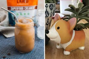 split thumbnail of mason jar with iced latte in it, a corgi shaped mini planter with a succulent in it