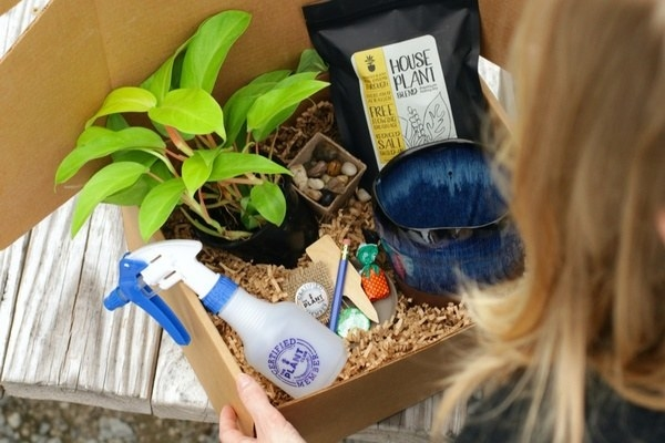 model opens up box with mister, soil, plant, and more