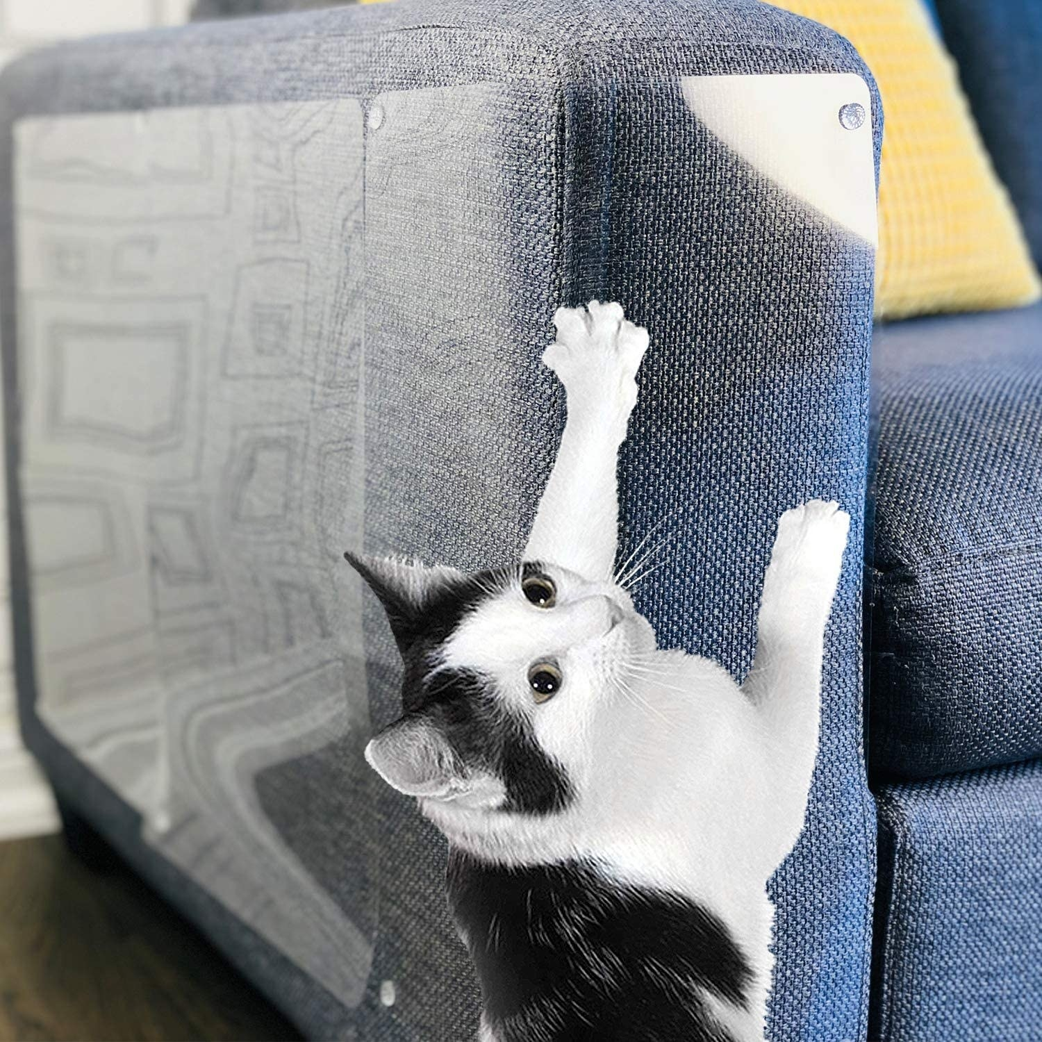 A cat scratching a couch with shields on it