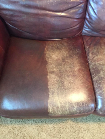 A couch cushion, half of which has been treated with the leather balm and looks brand new, and the other half that is untreated, which looks faded and worn