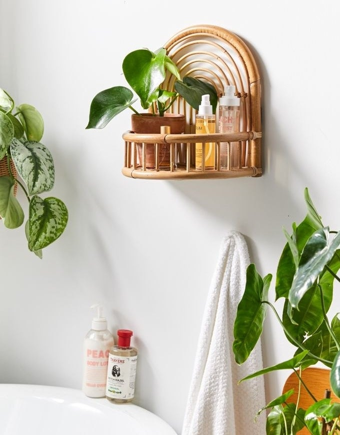 A product shot of the arched wall shelf holding a potted plant and two bottles of skincare