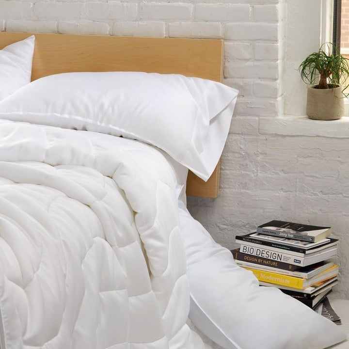 the white comforter