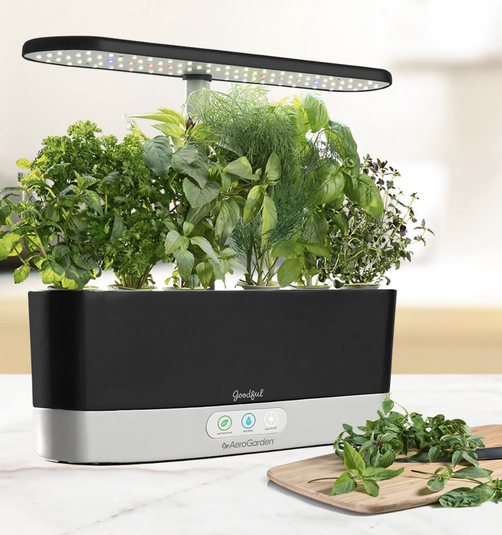 Goodful's AeroGarden sprouting herb plants on a kitchen countertop