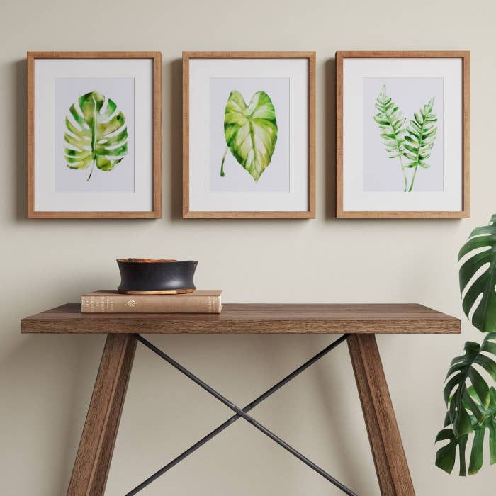 three framed prints with green leaves