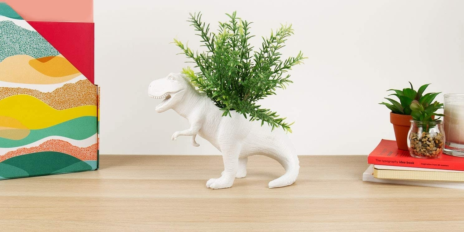 A T-Rex planter with a plant in its back is on a table