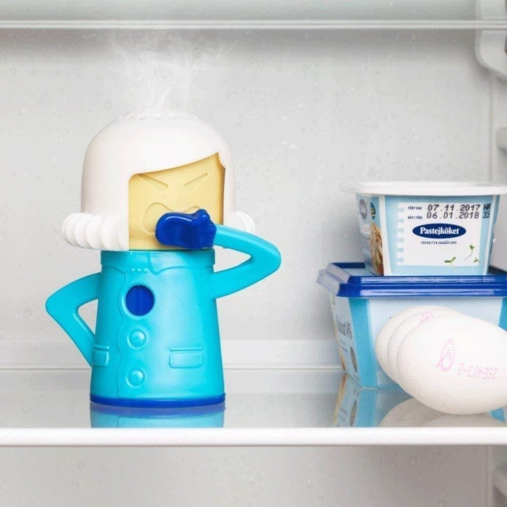 A fridge-deodorizing diva on the shelf of a fridge next to eggs and tubs