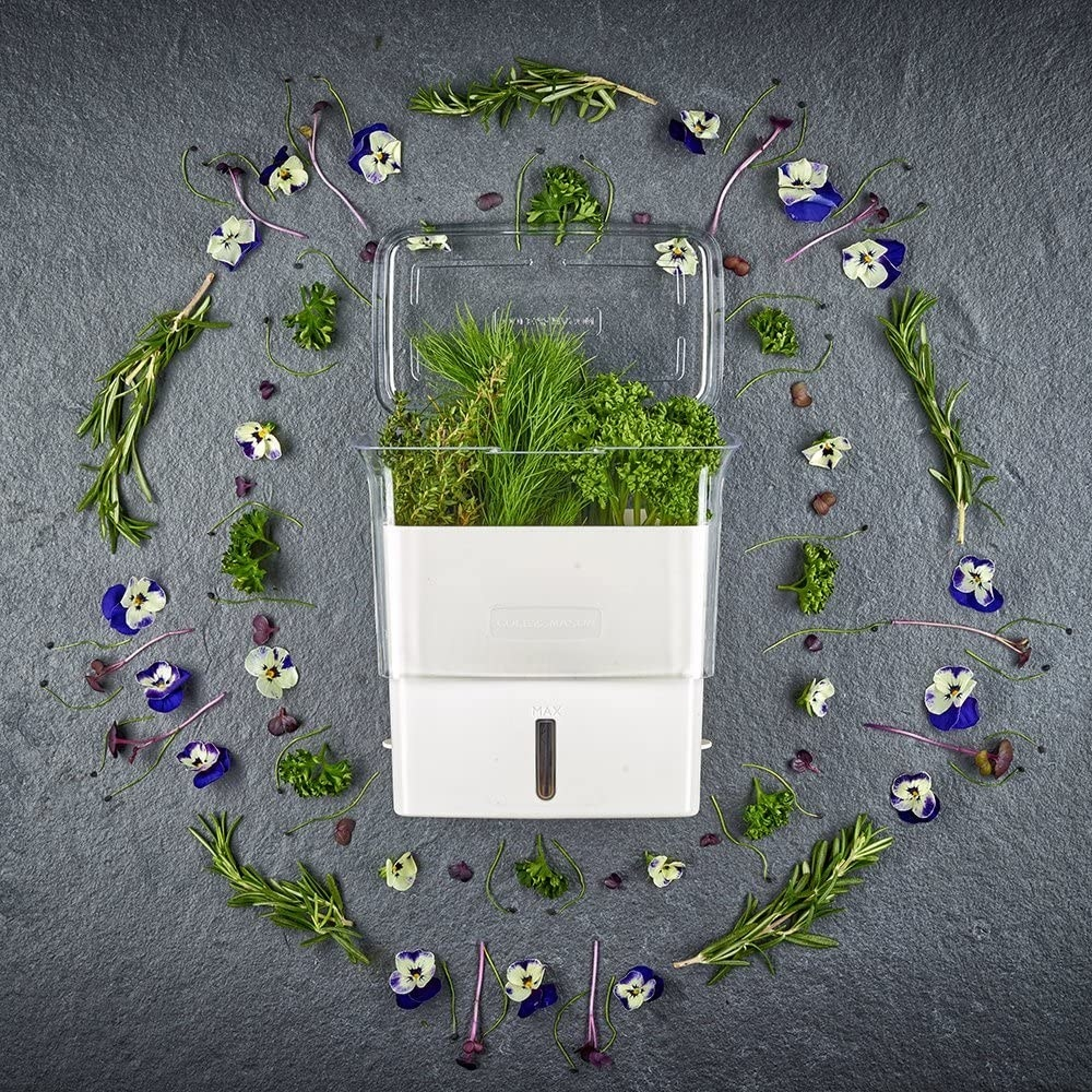 The hutch lies on a stone surface, open and full of herbs, and is surrounded by artistically-arranged herbs and flowers