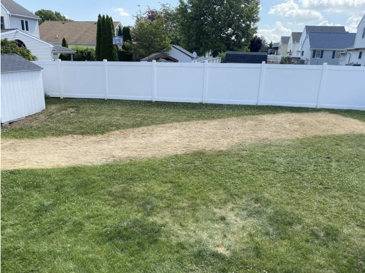 A lawn with a long strip of destroyed grass