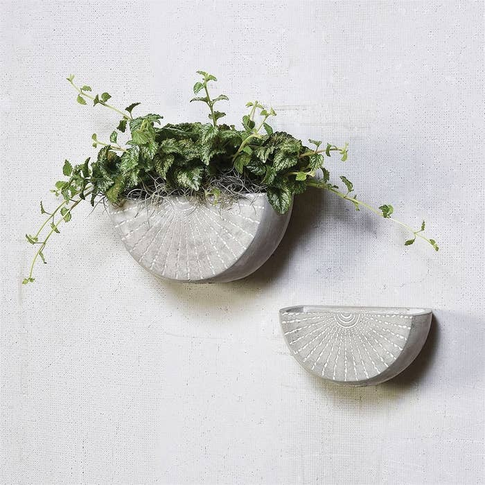 medium and small half circle cement planters on a wall