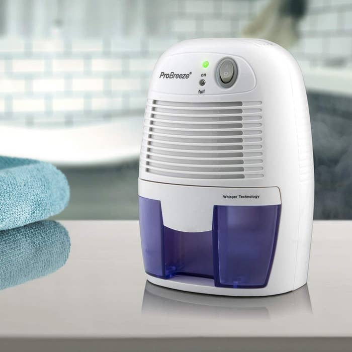 A white dehumidifier with a clear purple water reservoir