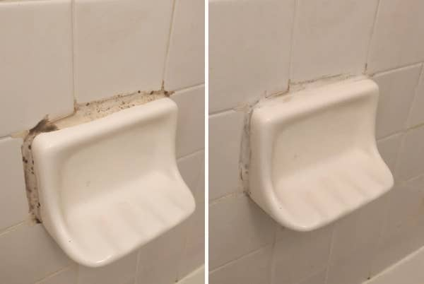 On the left, a photo of mold on a shower well, and on the right, the same shower wall with the mold cleaned away