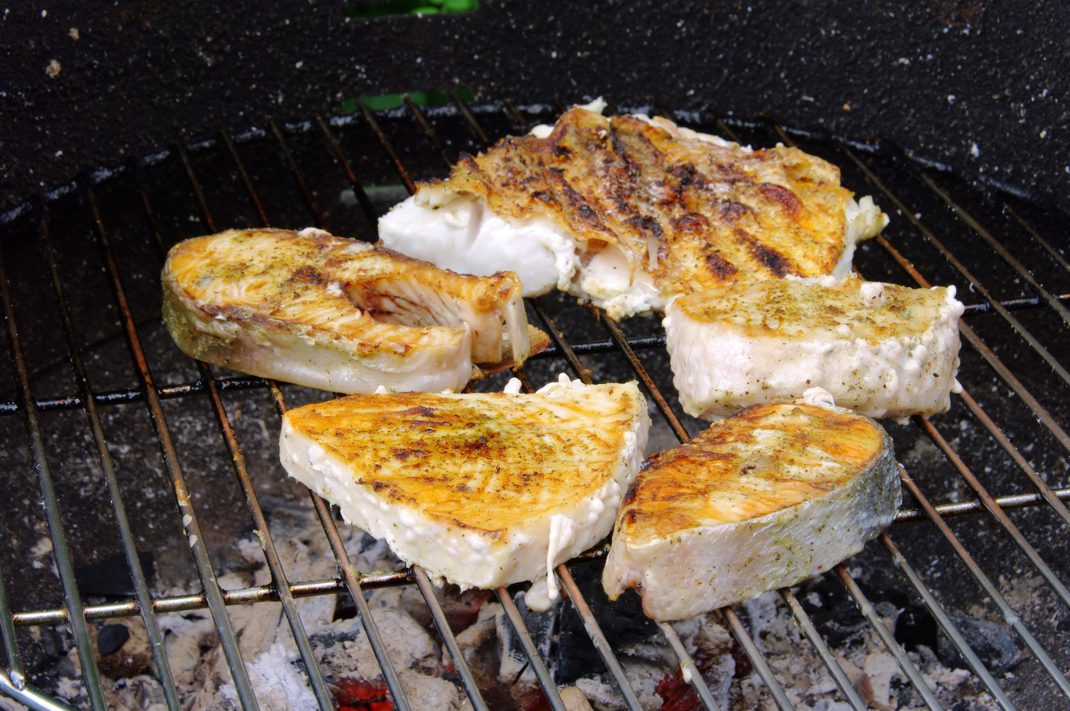 Salmon steaks cooking on a grill.